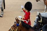 Trooping the Colour 2016. Horse Guards Parade, Westminster, London SW1A, London, United Kingdom, on 11 June 2016 at 11:51, image #719