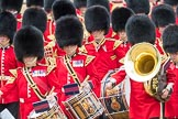 Trooping the Colour 2016. Horse Guards Parade, Westminster, London SW1A, London, United Kingdom, on 11 June 2016 at 11:53, image #727