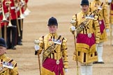 Trooping the Colour 2016. Horse Guards Parade, Westminster, London SW1A, London, United Kingdom, on 11 June 2016 at 11:54, image #730