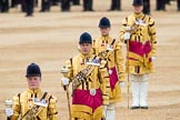 Trooping the Colour 2016. Horse Guards Parade, Westminster, London SW1A, London, United Kingdom, on 11 June 2016 at 11:54, image #731