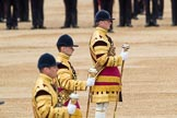 Trooping the Colour 2016. Horse Guards Parade, Westminster, London SW1A, London, United Kingdom, on 11 June 2016 at 11:54, image #732