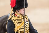 Trooping the Colour 2016. Horse Guards Parade, Westminster, London SW1A, London, United Kingdom, on 11 June 2016 at 11:55, image #754