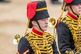 Trooping the Colour 2016. Horse Guards Parade, Westminster, London SW1A, London, United Kingdom, on 11 June 2016 at 11:56, image #755