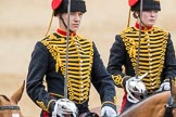 Trooping the Colour 2016. Horse Guards Parade, Westminster, London SW1A, London, United Kingdom, on 11 June 2016 at 11:56, image #757