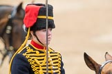 Trooping the Colour 2016. Horse Guards Parade, Westminster, London SW1A, London, United Kingdom, on 11 June 2016 at 11:56, image #760