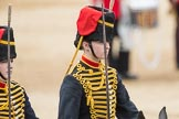 Trooping the Colour 2016. Horse Guards Parade, Westminster, London SW1A, London, United Kingdom, on 11 June 2016 at 11:56, image #761
