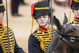 Trooping the Colour 2016. Horse Guards Parade, Westminster, London SW1A, London, United Kingdom, on 11 June 2016 at 11:56, image #762