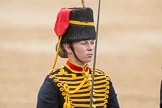 Trooping the Colour 2016. Horse Guards Parade, Westminster, London SW1A, London, United Kingdom, on 11 June 2016 at 11:56, image #765