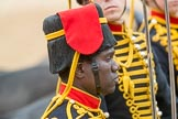 Trooping the Colour 2016. Horse Guards Parade, Westminster, London SW1A, London, United Kingdom, on 11 June 2016 at 11:56, image #766