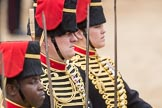 Trooping the Colour 2016. Horse Guards Parade, Westminster, London SW1A, London, United Kingdom, on 11 June 2016 at 11:56, image #767