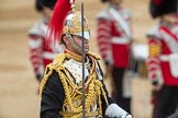 Trooping the Colour 2016. Horse Guards Parade, Westminster, London SW1A, London, United Kingdom, on 11 June 2016 at 11:56, image #768