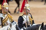 Trooping the Colour 2016. Horse Guards Parade, Westminster, London SW1A, London, United Kingdom, on 11 June 2016 at 11:56, image #769