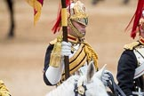 Trooping the Colour 2016. Horse Guards Parade, Westminster, London SW1A, London, United Kingdom, on 11 June 2016 at 11:56, image #770