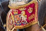 Trooping the Colour 2016. Horse Guards Parade, Westminster, London SW1A, London, United Kingdom, on 11 June 2016 at 11:59, image #783