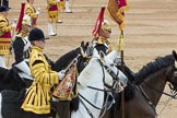 Trooping the Colour 2016. Horse Guards Parade, Westminster, London SW1A, London, United Kingdom, on 11 June 2016 at 12:01, image #817