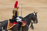 Trooping the Colour 2016. Horse Guards Parade, Westminster, London SW1A, London, United Kingdom, on 11 June 2016 at 12:01, image #821
