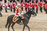Trooping the Colour 2016. Horse Guards Parade, Westminster, London SW1A, London, United Kingdom, on 11 June 2016 at 12:01, image #822