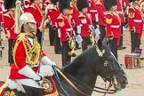 Trooping the Colour 2016. Horse Guards Parade, Westminster, London SW1A, London, United Kingdom, on 11 June 2016 at 12:01, image #823