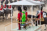 Trooping the Colour 2016. Horse Guards Parade, Westminster, London SW1A, London, United Kingdom, on 11 June 2016 at 12:01, image #829