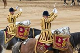 Trooping the Colour 2016. Horse Guards Parade, Westminster, London SW1A, London, United Kingdom, on 11 June 2016 at 12:02, image #836