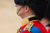 Trooping the Colour 2016. Horse Guards Parade, Westminster, London SW1A, London, United Kingdom, on 11 June 2016 at 12:04, image #844
