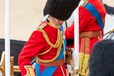 Trooping the Colour 2016. Horse Guards Parade, Westminster, London SW1A, London, United Kingdom, on 11 June 2016 at 12:05, image #846