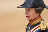Trooping the Colour 2016. Horse Guards Parade, Westminster, London SW1A, London, United Kingdom, on 11 June 2016 at 12:13, image #887