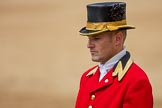 Trooping the Colour 2016. Horse Guards Parade, Westminster, London SW1A, London, United Kingdom, on 11 June 2016 at 12:13, image #892