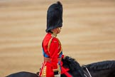 Trooping the Colour 2016. Horse Guards Parade, Westminster, London SW1A, London, United Kingdom, on 11 June 2016 at 12:14, image #897