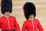 during The Colonel's Review {iptcyear4} (final rehearsal for Trooping the Colour, The Queen's Birthday Parade)  at Horse Guards Parade, Westminster, London, 2 June 2018, 09:54.