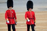 during The Colonel's Review {iptcyear4} (final rehearsal for Trooping the Colour, The Queen's Birthday Parade)  at Horse Guards Parade, Westminster, London, 2 June 2018, 09:55.