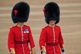 during The Colonel's Review {iptcyear4} (final rehearsal for Trooping the Colour, The Queen's Birthday Parade)  at Horse Guards Parade, Westminster, London, 2 June 2018, 09:56.