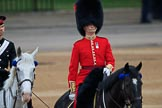 during The Colonel's Review {iptcyear4} (final rehearsal for Trooping the Colour, The Queen's Birthday Parade)  at Horse Guards Parade, Westminster, London, 2 June 2018, 10:05.