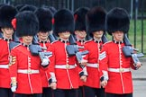 during The Colonel's Review {iptcyear4} (final rehearsal for Trooping the Colour, The Queen's Birthday Parade)  at Horse Guards Parade, Westminster, London, 2 June 2018, 10:29.
