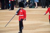 Colour Sentry Guardsman Jonathon Hughes (26) during The Colonel's Review 2018 (final rehearsal for Trooping the Colour, The Queen's Birthday Parade)  at Horse Guards Parade, Westminster, London, 2 June 2018, 10:32.