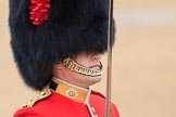 during The Colonel's Review {iptcyear4} (final rehearsal for Trooping the Colour, The Queen's Birthday Parade)  at Horse Guards Parade, Westminster, London, 2 June 2018, 10:32.