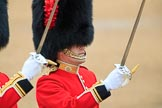 during The Colonel's Review {iptcyear4} (final rehearsal for Trooping the Colour, The Queen's Birthday Parade)  at Horse Guards Parade, Westminster, London, 2 June 2018, 10:33.