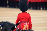 during The Colonel's Review {iptcyear4} (final rehearsal for Trooping the Colour, The Queen's Birthday Parade)  at Horse Guards Parade, Westminster, London, 2 June 2018, 10:36.