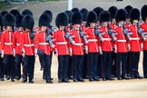 during The Colonel's Review {iptcyear4} (final rehearsal for Trooping the Colour, The Queen's Birthday Parade)  at Horse Guards Parade, Westminster, London, 2 June 2018, 10:37.