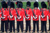 during The Colonel's Review {iptcyear4} (final rehearsal for Trooping the Colour, The Queen's Birthday Parade)  at Horse Guards Parade, Westminster, London, 2 June 2018, 10:48.
