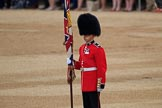 during The Colonel's Review {iptcyear4} (final rehearsal for Trooping the Colour, The Queen's Birthday Parade)  at Horse Guards Parade, Westminster, London, 2 June 2018, 10:57.