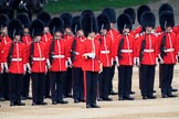 during The Colonel's Review {iptcyear4} (final rehearsal for Trooping the Colour, The Queen's Birthday Parade)  at Horse Guards Parade, Westminster, London, 2 June 2018, 11:07.
