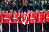 during The Colonel's Review {iptcyear4} (final rehearsal for Trooping the Colour, The Queen's Birthday Parade)  at Horse Guards Parade, Westminster, London, 2 June 2018, 11:10.