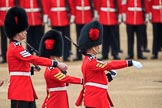 during The Colonel's Review {iptcyear4} (final rehearsal for Trooping the Colour, The Queen's Birthday Parade)  at Horse Guards Parade, Westminster, London, 2 June 2018, 11:17.