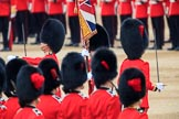 during The Colonel's Review {iptcyear4} (final rehearsal for Trooping the Colour, The Queen's Birthday Parade)  at Horse Guards Parade, Westminster, London, 2 June 2018, 11:21.