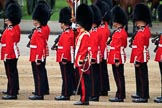 during The Colonel's Review {iptcyear4} (final rehearsal for Trooping the Colour, The Queen's Birthday Parade)  at Horse Guards Parade, Westminster, London, 2 June 2018, 11:28.