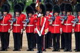 during The Colonel's Review {iptcyear4} (final rehearsal for Trooping the Colour, The Queen's Birthday Parade)  at Horse Guards Parade, Westminster, London, 2 June 2018, 11:29.