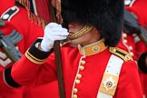 during The Colonel's Review {iptcyear4} (final rehearsal for Trooping the Colour, The Queen's Birthday Parade)  at Horse Guards Parade, Westminster, London, 2 June 2018, 11:36.