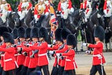 during The Colonel's Review {iptcyear4} (final rehearsal for Trooping the Colour, The Queen's Birthday Parade)  at Horse Guards Parade, Westminster, London, 2 June 2018, 11:44.
