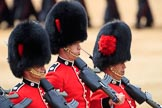 during The Colonel's Review {iptcyear4} (final rehearsal for Trooping the Colour, The Queen's Birthday Parade)  at Horse Guards Parade, Westminster, London, 2 June 2018, 11:46.